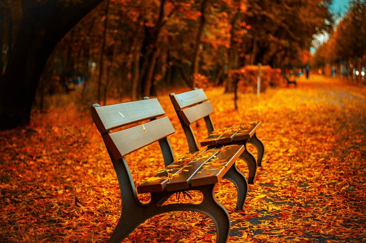 An time in Autumn