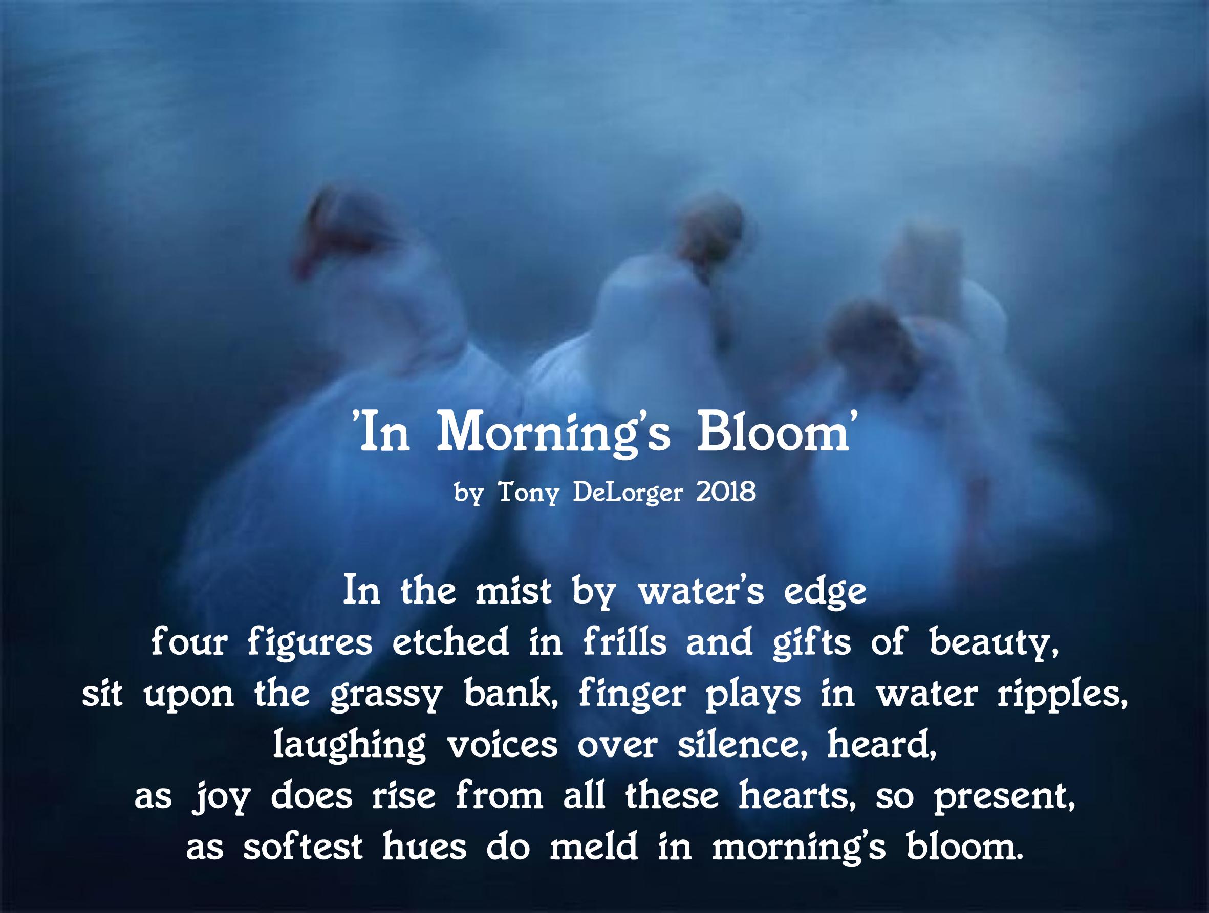 In Morning's Bloom