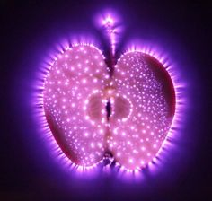 The Luminous Light of Life…the Aura