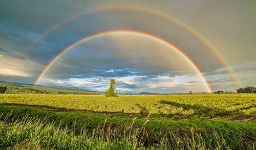 beyond life's rainbow