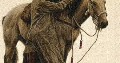 American Cowboy Story