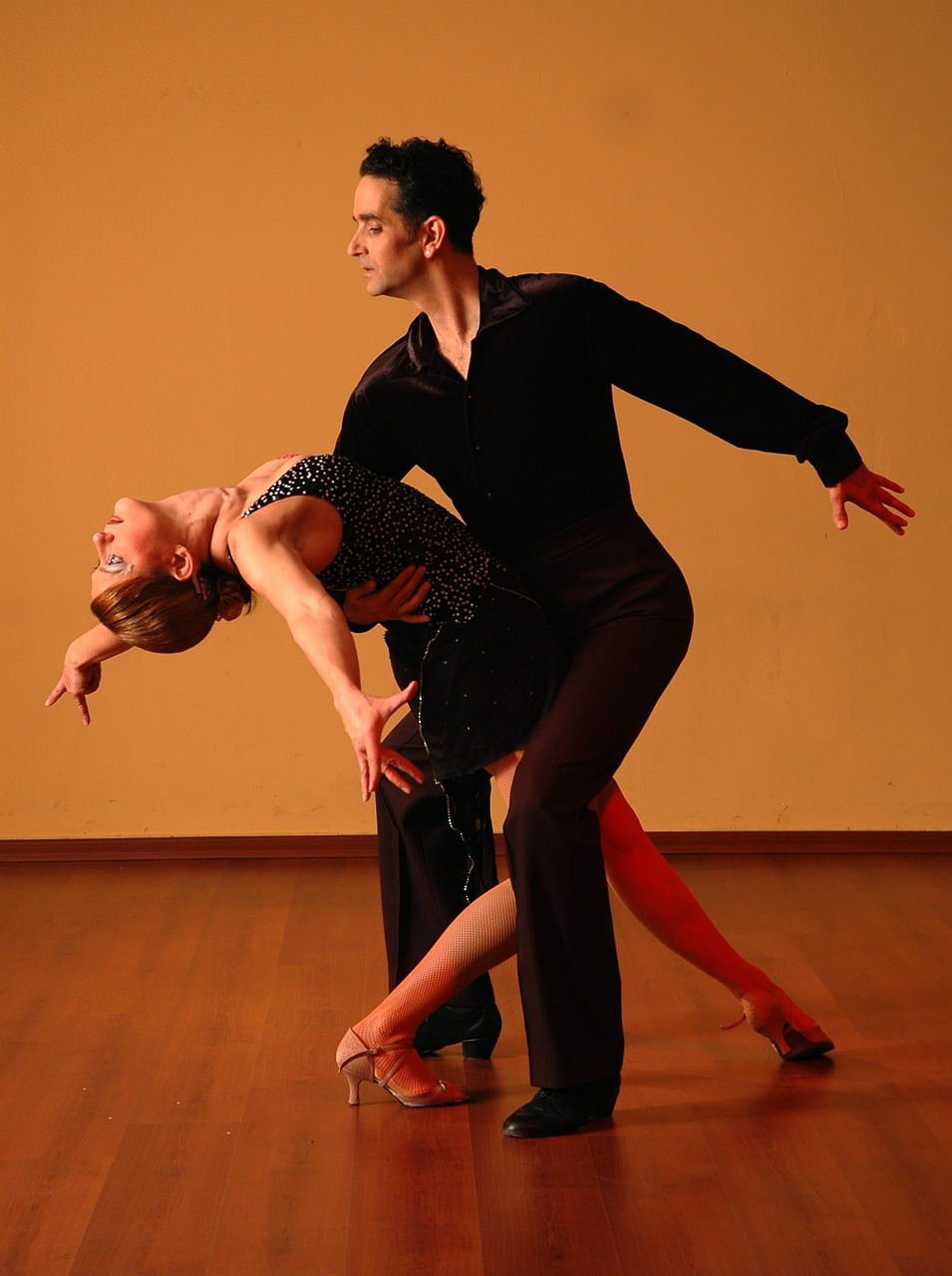 Dance of Domestication
