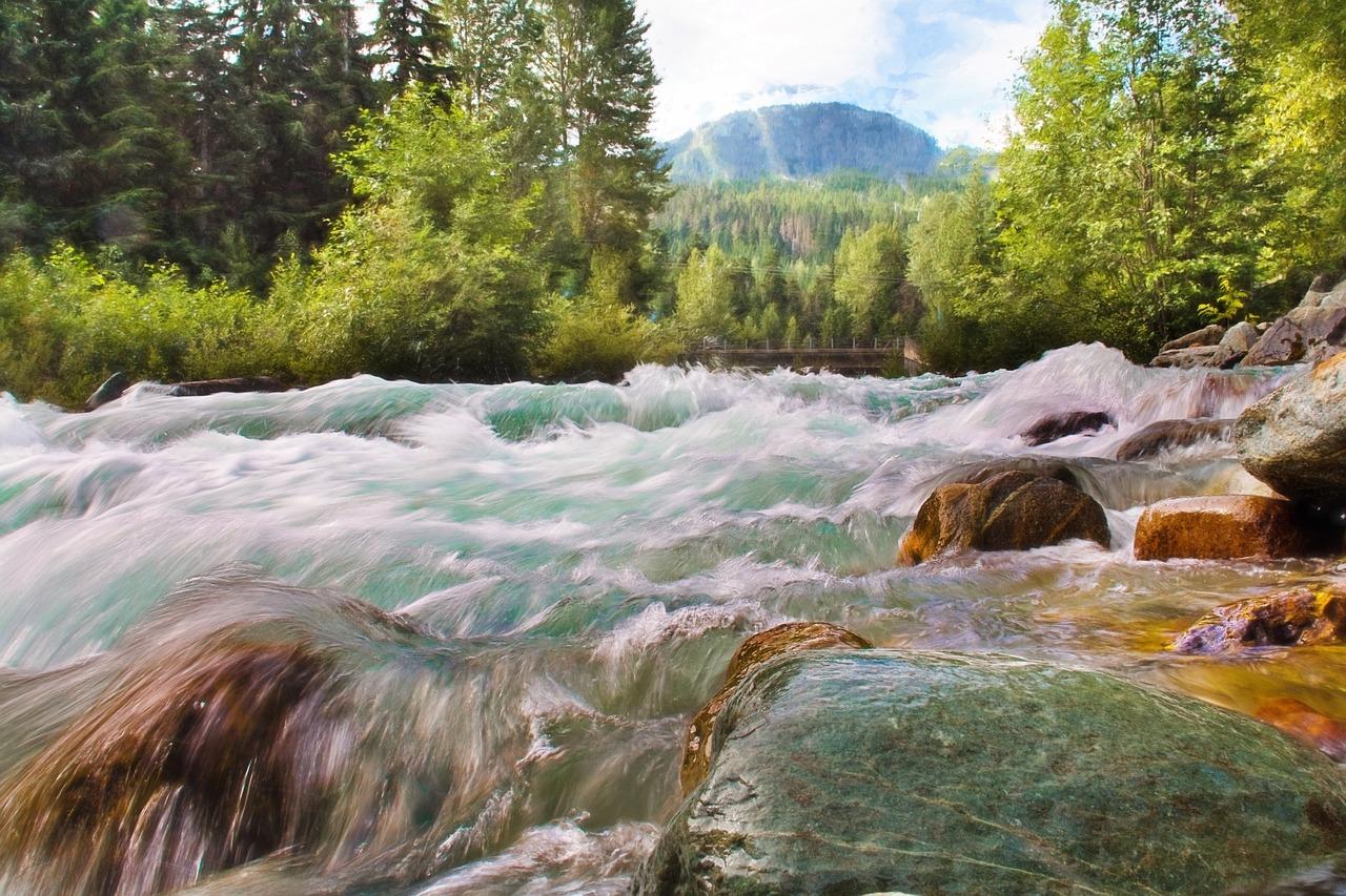Surviving the Rapids