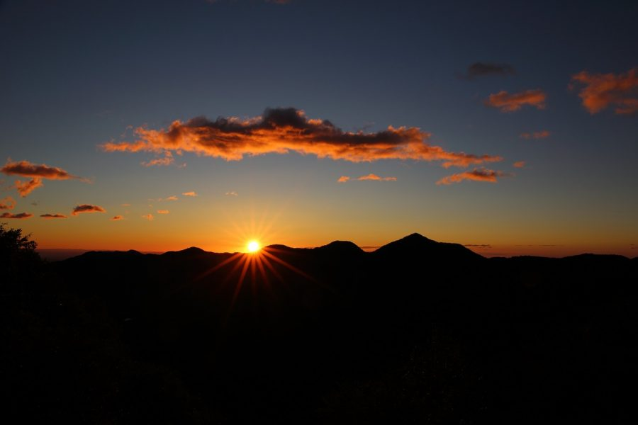 Walk at Sunrise