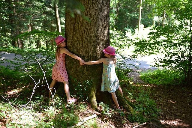 In Tree's Embrace