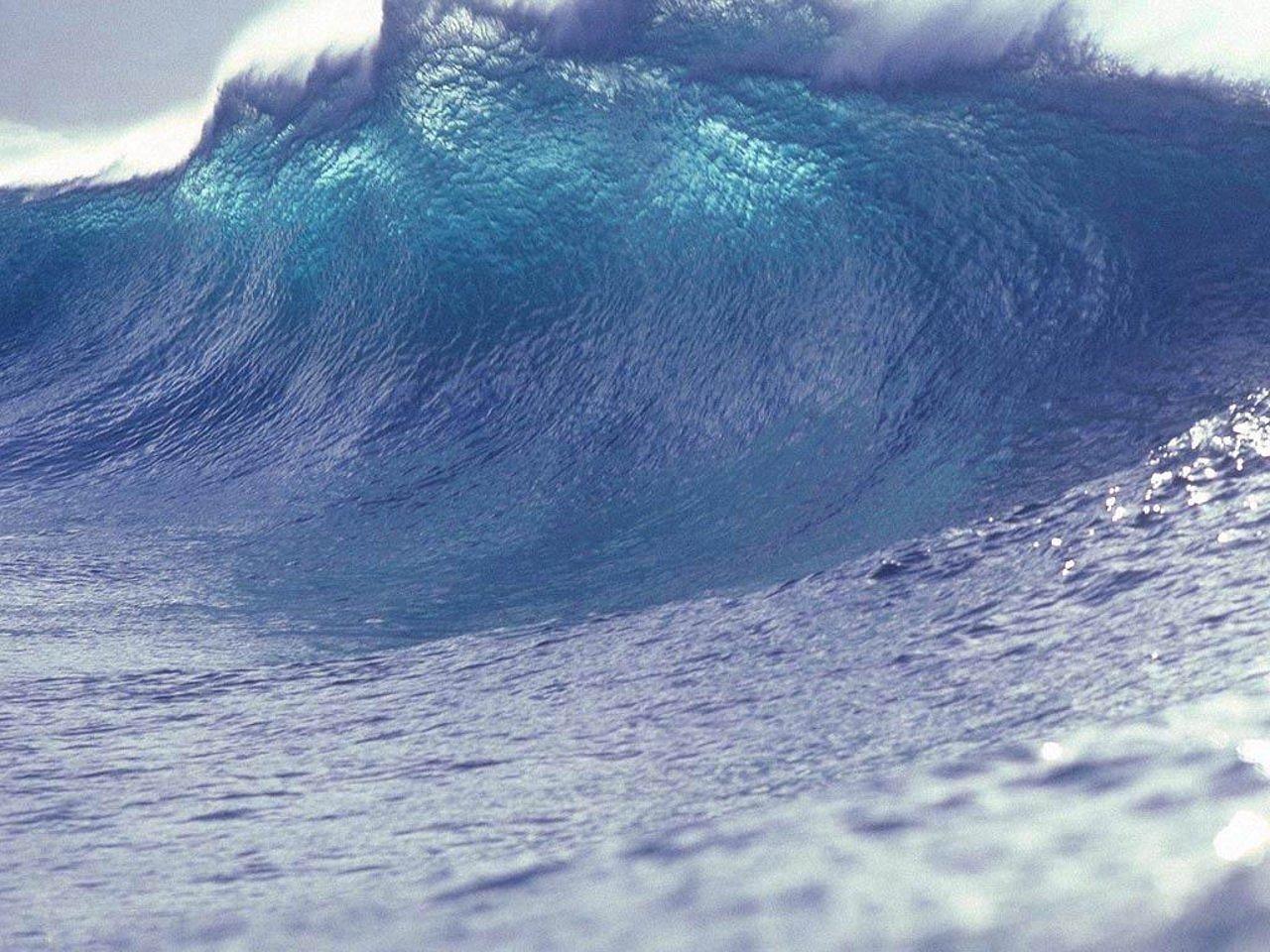 Tsunami...the Venting