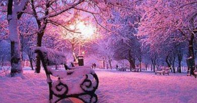freshly fallen snow