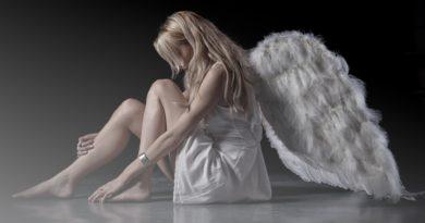 those wings