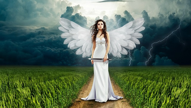 angel's wings
