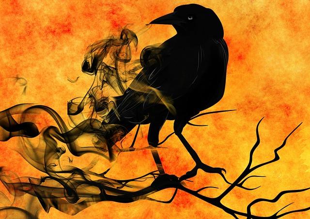 Corvidae Corvus, Dead Birds Everywhere