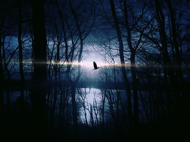 Velvet Midnight