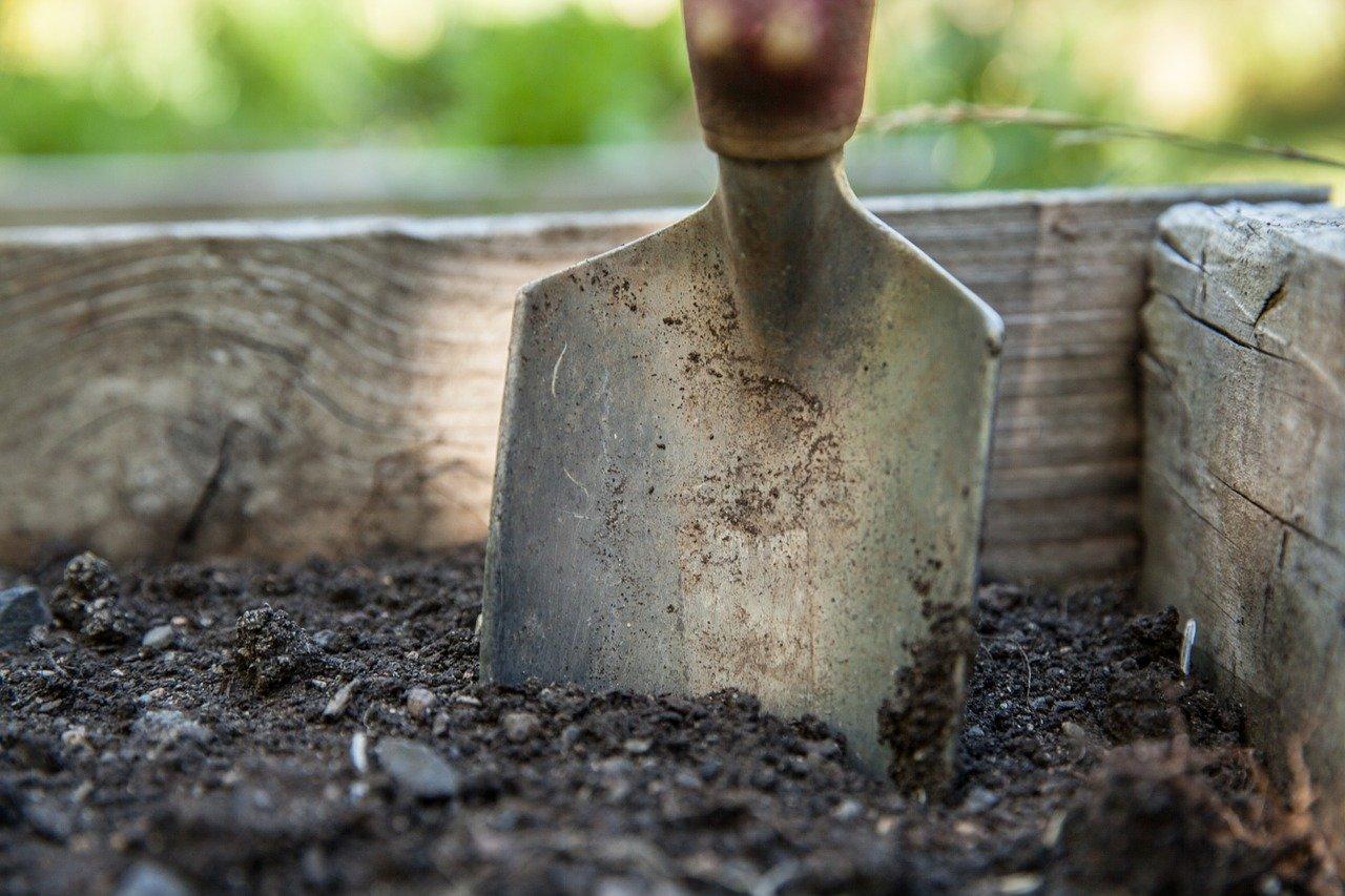 Narrative of Dirt